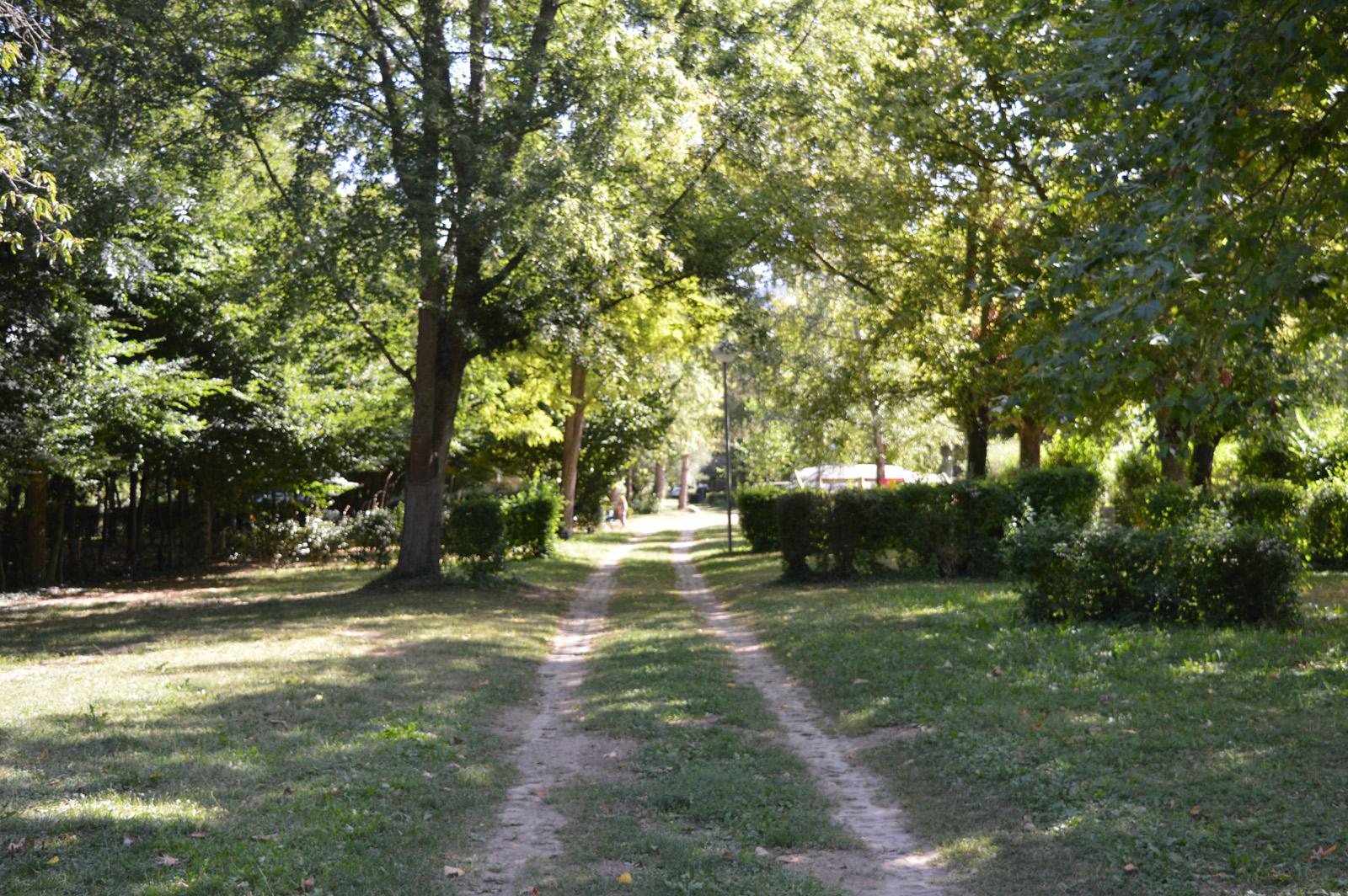 Des emplacements spacieux, arborés, calmes et en pleine nature